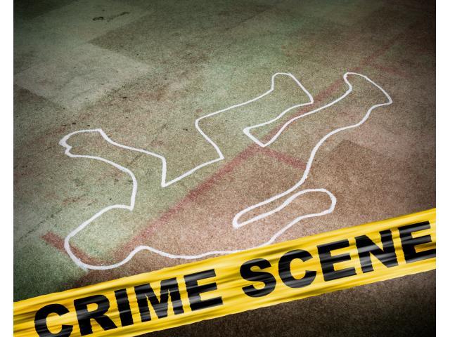 Book Murder Mystery