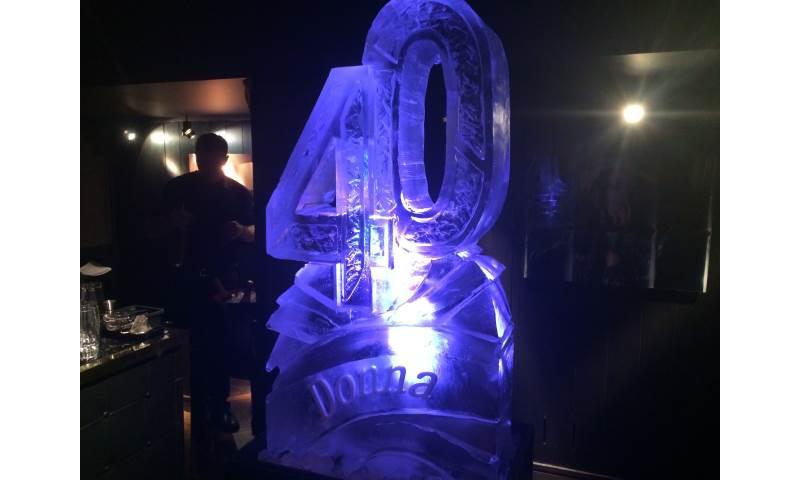 40 Ice Luge