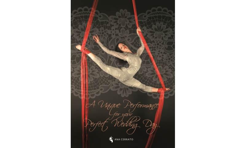 Aerial Silks- Weddings