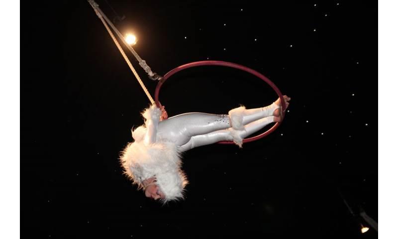 Aerial Hoop- Christmas