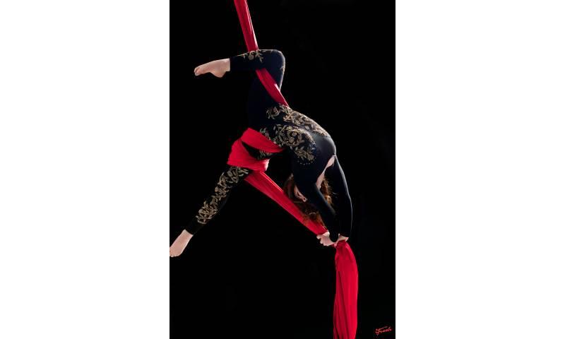 Circus & Aerial Silks