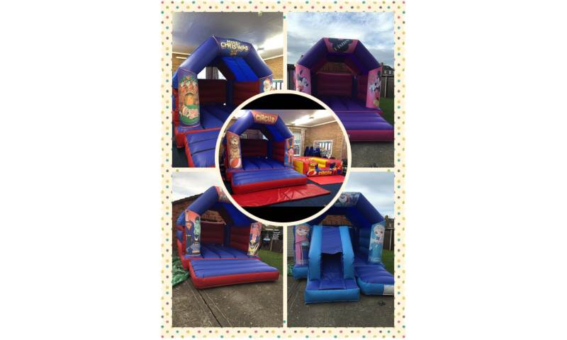 A Few of Our Theme Castles