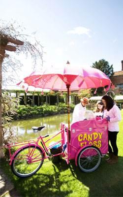 Candy Floss Trike (2).jpg