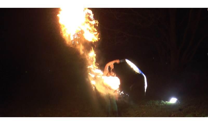 Fire Whip film still