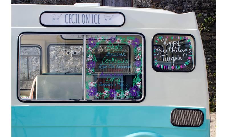 cecil-on-ice-side-window.jpg