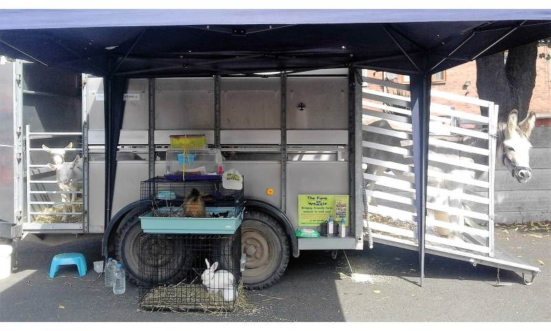 Meet goats, pet rat, hen with chicks, rabbits and donkey - just some of the animals from The Farm On Wheels.