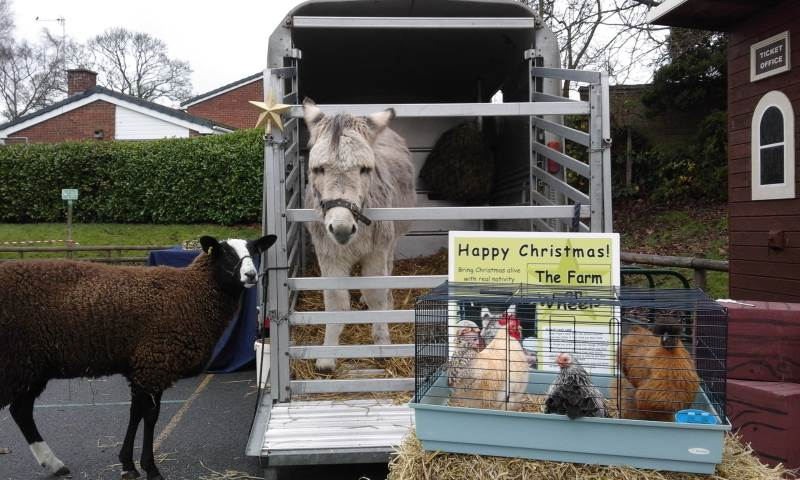 Celebrate Christmas with the animals - nativity costumes provided.