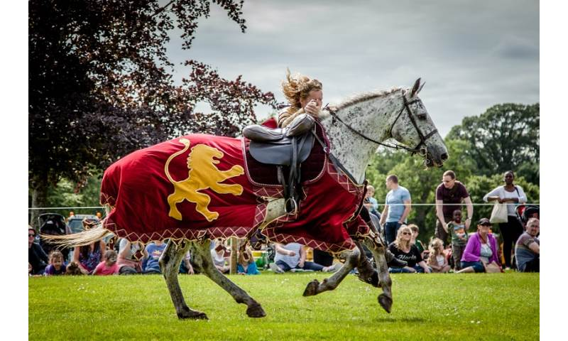 Flavours of Fingal Country Show Dublin Ireland - The Cavalry of Heroes Medieval Jousting Horse Stunt Show - Golden Knight Marc Lovatt Vault Trick Riding Sequence 2.jpg