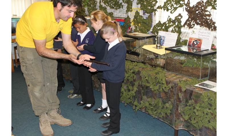 Bugfest school visits