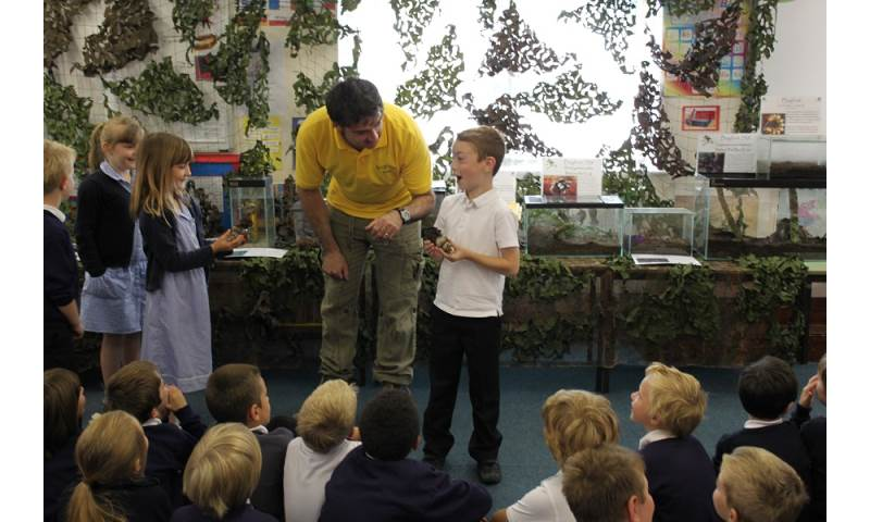 Awesome school visits