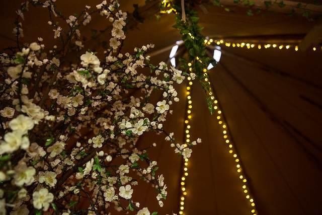 Fairy lights.jpg