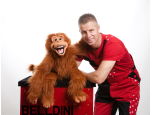 Mr Belldini Logo