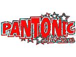 Pantonic All Stars Steel Orchestra Logo