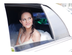 Topman Chauffeurs & Limo Hire Ltd Logo