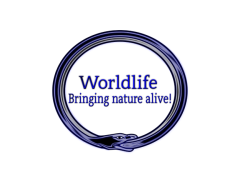 World Life Conservation  Logo