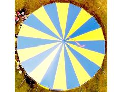 Circus Sensible Logo